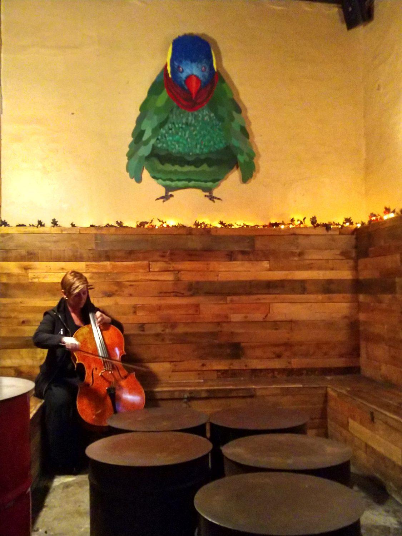 Kate Dillingham warming up at Pine Box Rock Shop